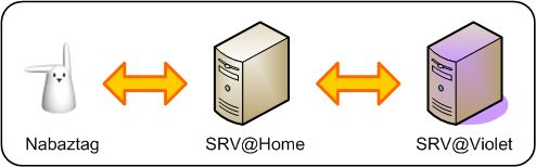 schema_proxy.jpg