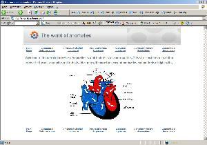 wikispamsite2.jpg