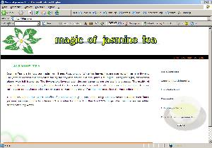 wikispamsite3.jpg